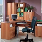 Изготовление корпусной мебели по индивидуальным заказам фото