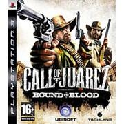 Игра для ps3 Call of Juarez: Bound in Blood фото