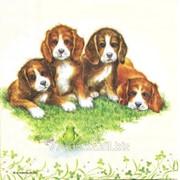 Салфетка для декупажа Четыре щенка фото