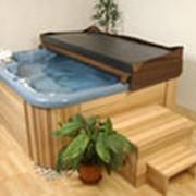 Серия Swim SPA, Гидромассажные спа бассейны, Бассейны поликарбонатные. фото