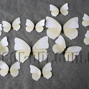 Бабочки пластиковые белые на магните/липучке 6-12 см 12 шт 7337 фото