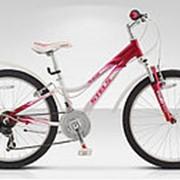 Велосипед подростковый Stels Navigator-460 V 24[[MY_OWN_QUOTE]]15 фото