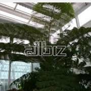 Сады зимние из металлопластика фото