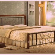 Кровать Кэлли 140 х 200 каштан фото