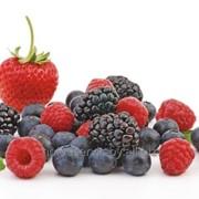 Дикорастущие ягоды (wild berries) фото