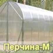 """Теплица """"Перчина М"""" ВОЛЯ фото"""