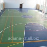Protolino, Протолино, Рулонной напольное покрытие для спортзала фото