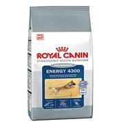 Cyno Energy 4300 Royal Canin корм для взрослых собак, От 15 месяцев до 6 лет, Пакет, 15,0кг фото