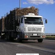 Международные грузоперевозки автомобильным транспортом фото