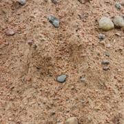 Смесь песчано гравийная С5 фото