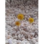 Крошка мраморная белая в мешках фото