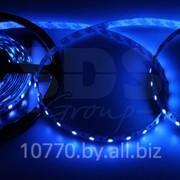 LED лента открытая, ширина 10 мм, IP23, SMD 5050, 60 диодов/метр, 12V, цвет светодиодов синий фото