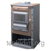 Печь-камин Tim Sistem Carobna Pec фото