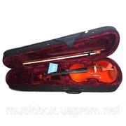 Скрипка тигровая Rafaga AF 3/4 фото