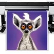 Печать широкоформатная фото