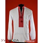 Мужская вышитая сорочка (chs-02-13) фото