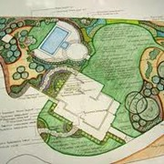Оформление зимних садов в г. Николаев фото