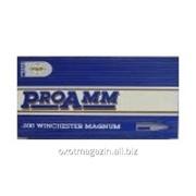Патрон Pretoria Metal Pressings (PMP) 300 WIN MAG 11,66 гр. фото
