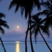 Тринидад и Тобаго фото