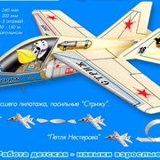 Модель самолета: Стриж фото