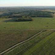 Земля сельскохозяйственного назначения в Московской области фото