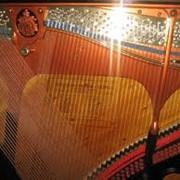 Ремонт рояля Украина фото