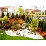 Оформление садов фото
