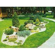Ландшафтный Дизайн и озеленение участков фото