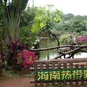 Экскурсия в ботанический сад тропических растений Синлун фото