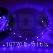 LED лента открытая, IP23, SMD 3528, 60 диодов/метр, 12V, цвет светодиодов синий NEON-NIGHT фото