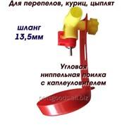 Ниппельная поилка для перепелов угловая с каплеуловителем фото