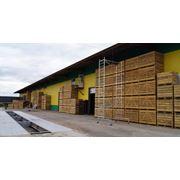 Хранение овощей и фруктов Примем на хранение сельхозпродукцию на взаимовыгодных условиях фото