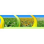 Агроуслуги внедрение инноваций в сельском хозяйстве фото