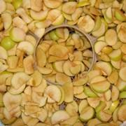 Сушилки фруктов фото