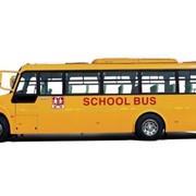 Автобусы школьные YUTONG фото