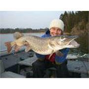 Подледная рыбалка фото