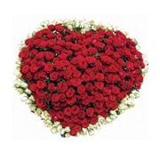 Букеты из роз. Валентинка фото