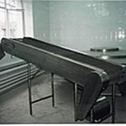 Камера дефростации, оборудование для переработки морепродуктов фото
