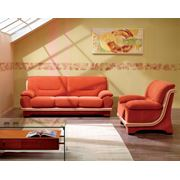 """Мягкая мебель """"Дегамо"""" фото"""