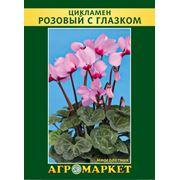 Семена цикламен сорт Розовый с глазком. Опт фото
