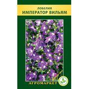 Семена цветов сорт Лобелия эринус Император Вильям. Опт фото