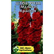 Шток-роза (Мальва) Красная фото