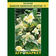 Семена цветов сорт Бегония ампельная Шансон ванильно-желтая F1. Опт фото
