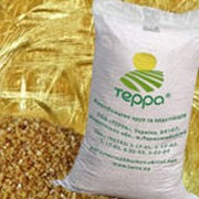 Крупа пшеничная яровая ТЕРРА №2, №3 фото