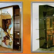Шкаф-купе элит, роспись художественная, стразы фото