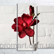 Модульна картина на полотні Червона квітка в білій вазі код КМ100200(176)-032 фото