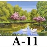 Репродукция A-11, размер 50х70, 40х50, 30х40 фото