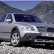 Автомобиль Skoda Octavia фото