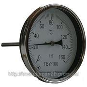 Термометры биметаллические показывающие ТБУ-100 фото