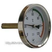 Термометры биметаллические показывающие ТБУ-63 фото